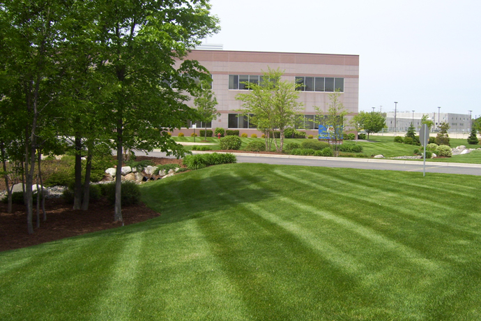 Commercial Property Maintenance : Commercial property maintenance platoon landscaping